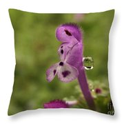 Rain Drop Olympics On Dead Nettle Flower Throw Pillow