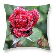 Rain Drop Rose Throw Pillow