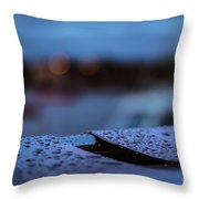 Rain Droplets On Bench Throw Pillow