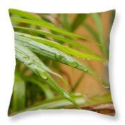 Rain Droppe1 Throw Pillow