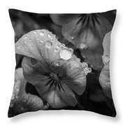 Rain Drops In The Morning Throw Pillow