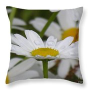 Rain Drops On Pedals Throw Pillow