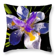 Rain Flower Morning Throw Pillow