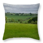 Rain Is Over. Throw Pillow