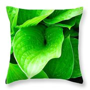Rain Kissed 2 Throw Pillow