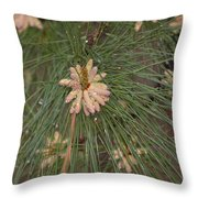 Rain N Flower Throw Pillow