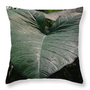 Rain On Leaf Throw Pillow