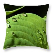 Rain On Leaf Throw Pillow