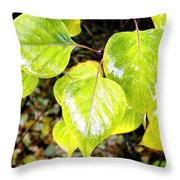 Rain On The Fall Lilac Throw Pillow
