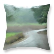 Rain Over Lachish Throw Pillow