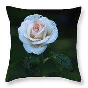 Rain Rose Throw Pillow