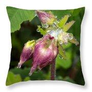 Rain Soaked Throw Pillow