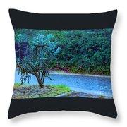 Rain Storm On Lake Linda Throw Pillow