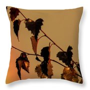 Rainbow And Copper Throw Pillow