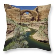 Rainbow Bridge Upstream Throw Pillow by Jerry McElroy