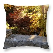 Rainbow Brook  Throw Pillow