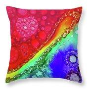 Rainbow Coaster  Throw Pillow