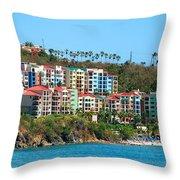 Rainbow Collection  Throw Pillow