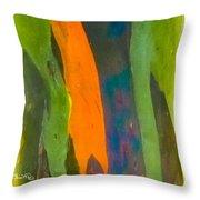Rainbow Eucalyptus 5 Throw Pillow