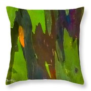 Rainbow Eucalyptus 6 Throw Pillow