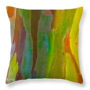 Rainbow Eucalyptus 8 Throw Pillow