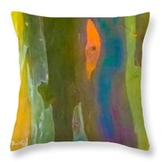 Rainbow Eucalyptus 9 Throw Pillow