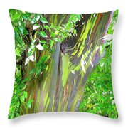 Rainbow Eucalyptus Throw Pillow
