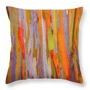 Rainbow Eucalytpus Throw Pillow