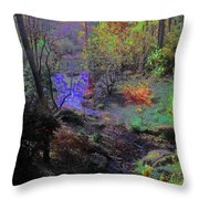 Rainbow Fairies Sweep Across The Landscape Throw Pillow
