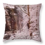 Rainbow Falls Smoky Mountain National Park -- Painted Photo. Throw Pillow by Christopher Gaston