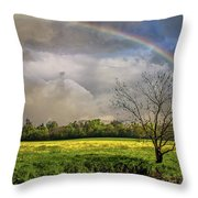 Rainbow Field Throw Pillow