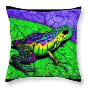 Rainbow Frog 2 Throw Pillow