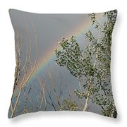 Rainbow In The Trees Throw Pillow