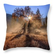 Rainbow In Yosemite Valley Ice Fog Throw Pillow