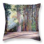 Rainbow Lane Throw Pillow