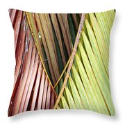 Rainbow Of Palms Gp Throw Pillow