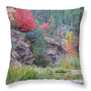 Rainbow Of The Season With River Throw Pillow