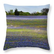Rainbow On The Ground Throw Pillow