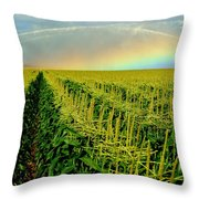 Rainbow Over The Cornfields Throw Pillow