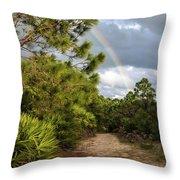 Rainbow Path Throw Pillow