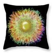 Rainbow Petals Throw Pillow