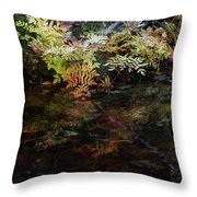 Rainbow Pickle Creek Reflections 6272 H_3 Throw Pillow