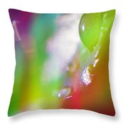 Rainbow Rain 2 Throw Pillow