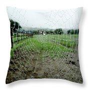 Raincatcher Web Throw Pillow