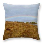 Raindow Over Gold Throw Pillow