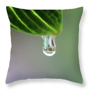 Raindrop 4 Throw Pillow