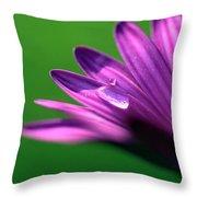 Raindrop On Purple Petal Throw Pillow