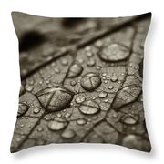 Raindrops #1 Throw Pillow