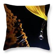 Raindrops From Sunflower Petal Throw Pillow