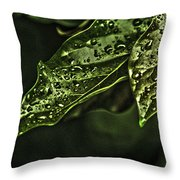 Raindrops Hdr Throw Pillow